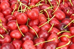 Cherry Royalty Free Stock Photos