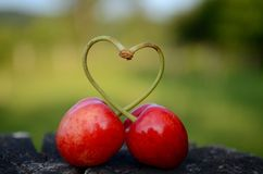 Cherry Love Royalty Free Stock Images
