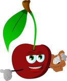 Cherry with lyre Royalty Free Stock Images