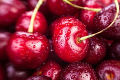 Cherry macro Stock Photos