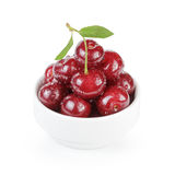 Cherry merry berries in white bowl isolated Royalty Free Stock Photo