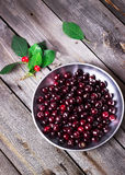 Cherry in metal bowl on old wooden background. Royalty Free Stock Image