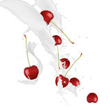 Cherry in milk splash Stock Photos
