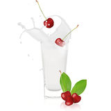 Cherry with milk splash. Over white Royalty Free Stock Photography