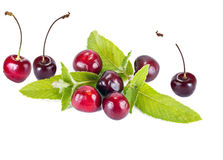 Cherry and mint leaves Royalty Free Stock Images