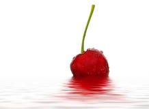 cherry mokra Obraz Royalty Free