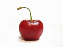 cherry mokra Obrazy Stock