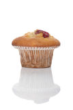 Cherry muffin Stock Photo