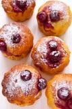 Cherry Muffins royaltyfria bilder