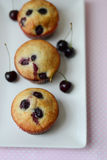 Cherry muffins Royalty Free Stock Photos