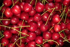 Cherry new. Close up of  red cherries Stock Image