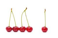 Cherry On White Stock Image