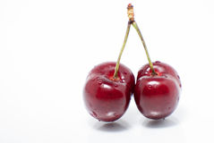 Cherry pair Royalty Free Stock Images