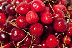 Cherry pattern Royalty Free Stock Images