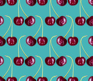 Cherry pattern seamless. Red berry background texture Royalty Free Stock Photos