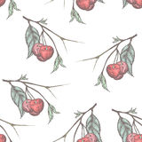 Cherry pattern Stock Images