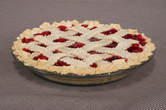 Cherry Pie Fotografia de Stock Royalty Free