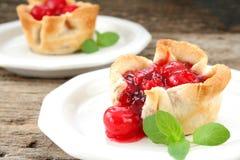Free Cherry Pie Stock Images - 9265994