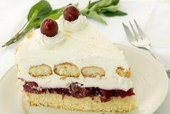 Cherry Pie Stock Image
