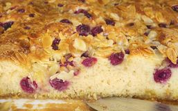 Cherry pie, close up Royalty Free Stock Image
