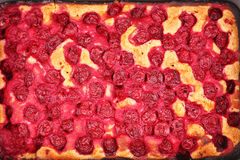Cherry pie close up Royalty Free Stock Photo