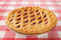 Cherry pie with lattice top Stock Image