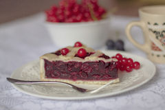 Cherry pie with viburnum berries Royalty Free Stock Photography