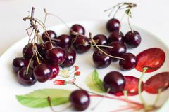 Cherry in the plate Stock Photo