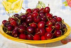 Cherry plate red Royaltyfri Fotografi