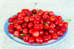 Cherry plate red Royaltyfria Foton
