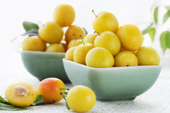 Cherry-plum. Two plates of the yellow damson plum Royalty Free Stock Photography