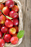 Cherry-plum in basket Stock Photos