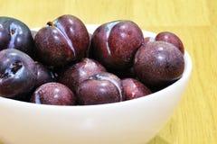 Cherry Plum frais Image stock