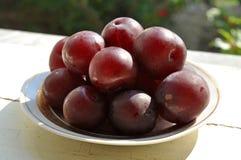 Cherry plum fruit Stock Images