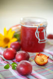 Cherry plum jam with a bank Stock Photos