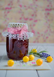 Cherry plum jam Stock Photography