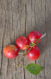 Cherry-plum Stock Photos