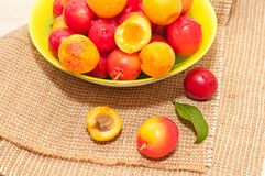 Cherry-plums and apricots Royalty Free Stock Photos