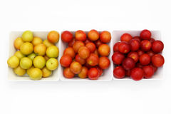 Cherry-plums in bowls, decomposed by the color Stock Photography