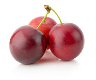 Cherry plums isolated on the white background Stock Photo