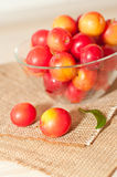 Cherry-plums Royalty Free Stock Photography