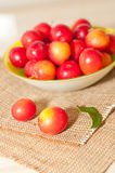 Cherry-plums Stock Photos