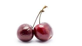 cherry pojedynczy white Zdjęcie Royalty Free