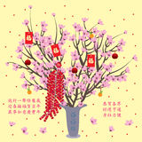 Cherry pot display. Illustration cherry pot elements yellow background Royalty Free Stock Images