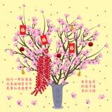Cherry pot display vector illustration