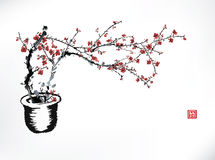 Cherry pot ink painting Stock Image