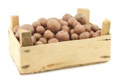 Cherry potatoes (small dutch potatoes) Stock Photography