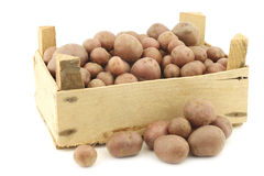 Cherry potatoes (small dutch potatoes) Stock Images