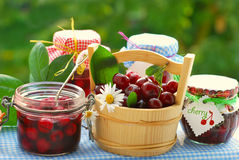Cherry preserves in the garden Royalty Free Stock Photography