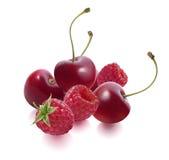 Cherry and raspberry isolated on white horizontal Royalty Free Stock Photo